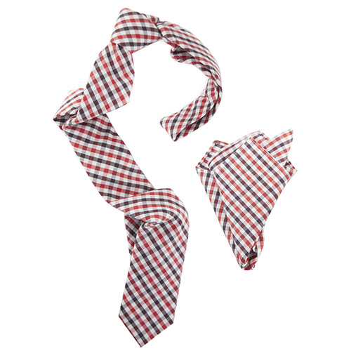Gingham revolution tie and handkerchief combo